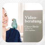 Online Beratung per Lifeschaltung/Video-Call
