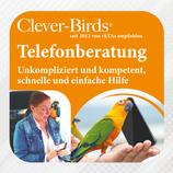 Clever-Birds - Telefonberatung durch Claudia Schlüter