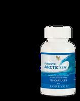 ARTIC SEA FOREVER REF: 376