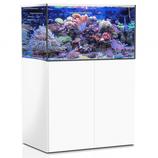 325 l Rahmenloses Meerwasser-Komplettaquarium mit Unterschrankfiltersystem Aqua Medic Armatus XD 375