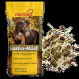 Gastro-Müsli 20kg Sack