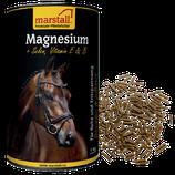 Magnesium 1kg Dose