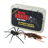 Boris Magic Spider
