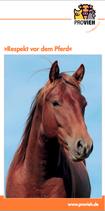 Respekt vor dem Pferd