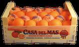 E Schachtle Orange