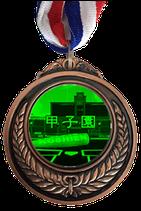 限定販売!WOWGRAMメダル(阪神甲子園球場)