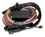 Haltech Elite 2500 Basic Wiring loom