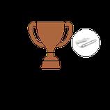 Bronze Microneedling Schulung ohne Gerät (1,5 Tage)