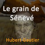 Le grain de Sénevé