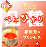 べにひかり【紅茶・要】