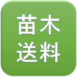 沖縄/離島 苗木関連 追加送料