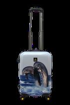 Maleta rígida Dolphin tres tamaños