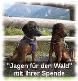 """Spende """"Jagen für den Wald"""""""