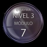 Nivel 3  Módulo 7 e-Bayma