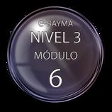 Nivel 3  Módulo 6 e-Bayma