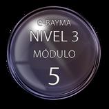 Nivel 3  Módulo 5 e-Bayma