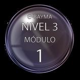 Nivel 3  Módulo 1 e-Bayma