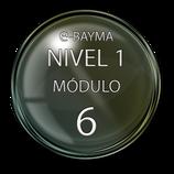 Módulo 6 e-Bayma