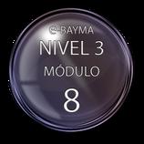 Nivel 3  Módulo 8 e-Bayma