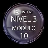 Nivel 3  Módulo 10 e-Bayma