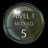Módulo 5 e-Bayma