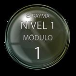 Nivel 1, Módulo 1 e-Bayma