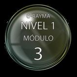 Módulo 3 e-Bayma