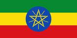 エチオピアJAS有機 シダモG1ナチュラル シャキッソ TADE GG農園