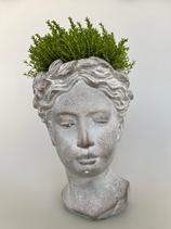 Pflanzkopf aus Keramik