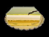 Dolce Cioccolato Bianco Pistacchio gr 900