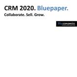 CRM 2020. Bluepaper.