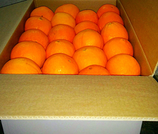 Arance Siciliane da Tavola coltivate a Ribera (Washington Navel)