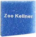 Filterschaum blau 50x50x3cm