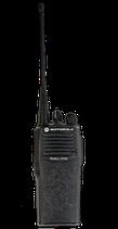 Motorola Walkie Talkies $15 per day
