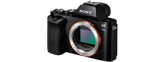 Sony Alpha A7S - $150 per day / $450 per week      / $1,500 per month
