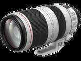 Canon EF 100-400mm L IS USM Lens $50 day / $150 week / $500 per month