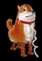 1 Laufender Ballon - Ø 50cm - Hund Chihuahua