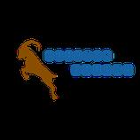 AST Level 1(Avalanche Skills Training レベル1コース)