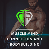 Trainingsprogramm - Bodybuilding