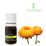 Aceite Esencial de Helicrysum / Inmortelle / Siempreviva (Helichrysum Angustifolium and Orientale) 100% Puro - oferta x 2 frascos