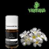 Aceite Esencial de Jazmín / Jasmine (Jasminum Grandiflorum) 100% Puro  - OFERTA X 2 FRASCOS 5 ml