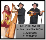 SHOW TÍPICO LLANERO