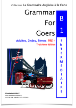 Pour quelques euros de plus:  Livre  ZERO FAUTE EN ANGLAIS - B1-B2 - INTERMEDIAIRE + Grammar for Goers B1 pré-intermédiaire