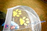 Regenschirm - Pfote SONNENBLUMENGELB
