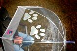 Regenschirm - Pfote SEIDENGRAU