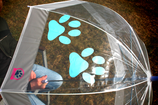 Regenschirme - OZEANBLAU