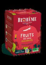 FRUITS DES BOIS ENCHANTÉS – X20 INFUSETTES