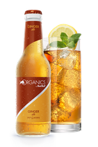 ORGANICS by Red Bull Ginger Ale 0,33 l