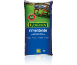 CONCIME EVERGREEN RINVERDENTE KG 5
