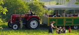 Wein, Kultur und Traktorgaudi